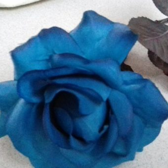 Navy Blue Rose - After Picture-1.jpg
